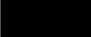chatnoir-logo