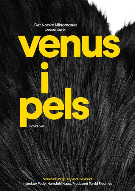 Venus i pels av David Ives